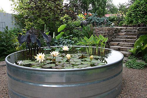 galvanized pond