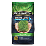 Pennington® Smart Seed™ Tall Fescue, 20 lb.