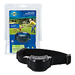 PetSafe® Stay + Play Wireless Fence™ Receiver Collar