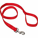 Retriever® 1 in. By 4 ft. Double Ply Leash, Red