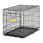 MidWest® Homes for Pets LifeStages® A.C.E Single Door Dog Crate, Medium Breed