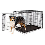 Petmate Training Retreat Wire Kennel, 34 in., For Dogs 50 to 70 lb.