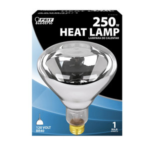Feit Electric 250 Watt Incandescent R40 Clear Heat Lamp Reflector At Tractor Supply Co