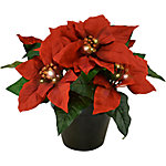 Mark Feldstein & Associates LED Poinsettia Planter with Timer