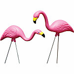 Bloem Pink Flamingo, Pack of 2
