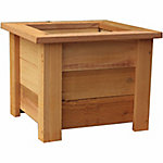 Square Western Red Cedar Planter, 15-1/2 in.