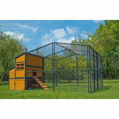 Producer S Pride Defender Chicken Coop Up To 14 Chickens