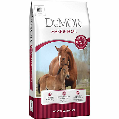 DuMOR Mare and Foal Horse Feed
