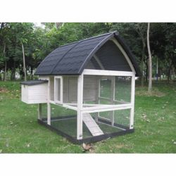 Shop Coops & Feathers Chicken Coops at Tractor Supply Co.
