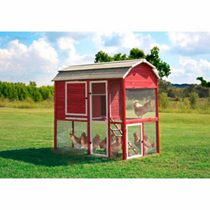 Precision pet products walk in red barn chicken coop at for Red chicken coop