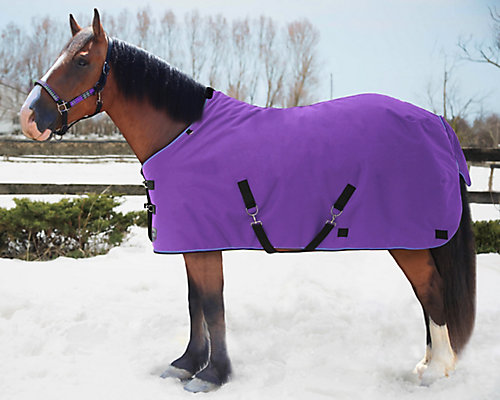 Horse Blankets - Tractor Supply Co.