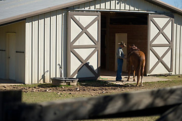 Horse being led into a stable.