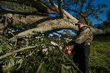 Man using a chainsaw.