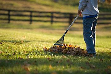 Prepare Your Lawn for Winter - Tractor Supply co.