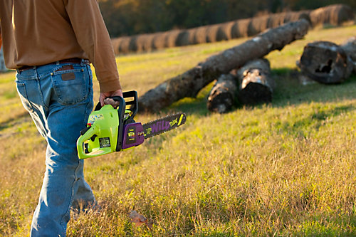 The basics of using a chainsaw for beginners tractor supply co the basics of using a chainsaw for beginners tractor supply co greentooth Images