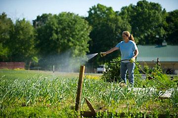 Woman spraying around a garden area