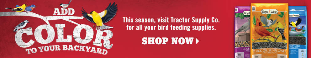 Shop Wild Bird Supplies at Tractor Supply Co.