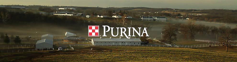 Purina header image