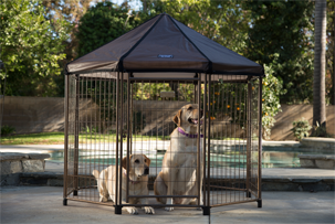 Advantek pet gazebo.