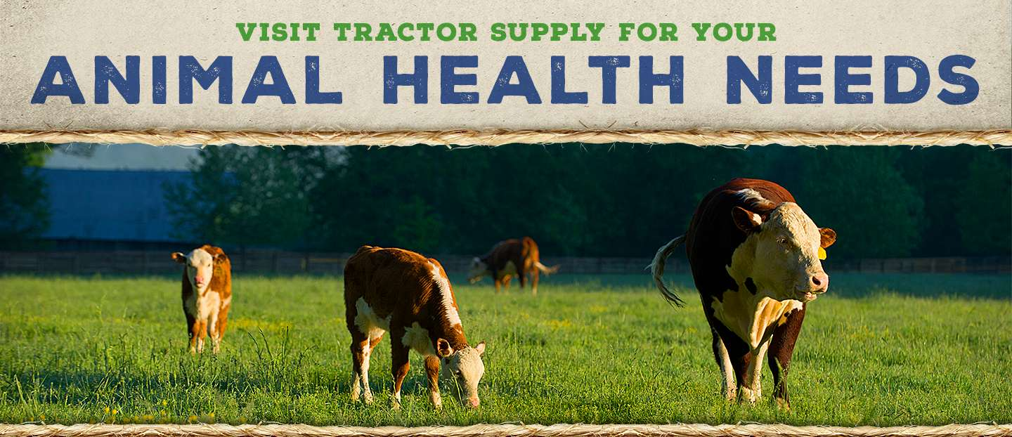 Animal Health | Tractor Supply Co