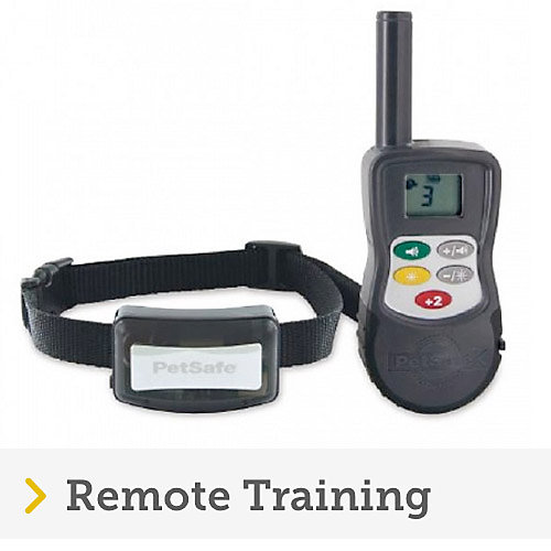 Black petsafe receiver collar and remote with correction buttons for dog remote training.