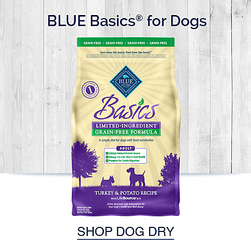 Blue Basics for Dogs