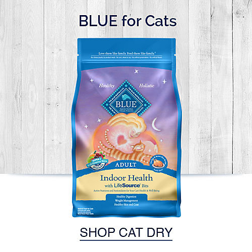 Blue for Cats