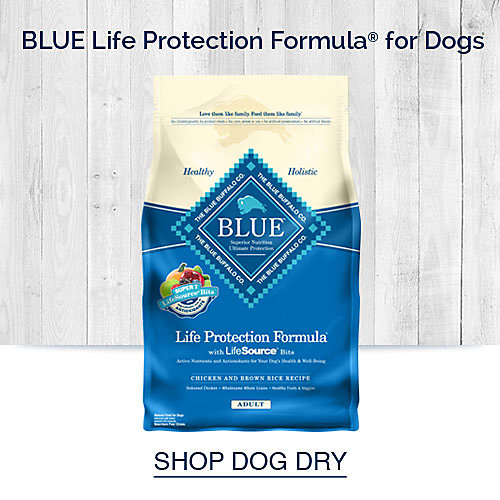 Blue Life Protection Formula for Dogs