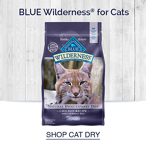Blue Wilderness for Cats