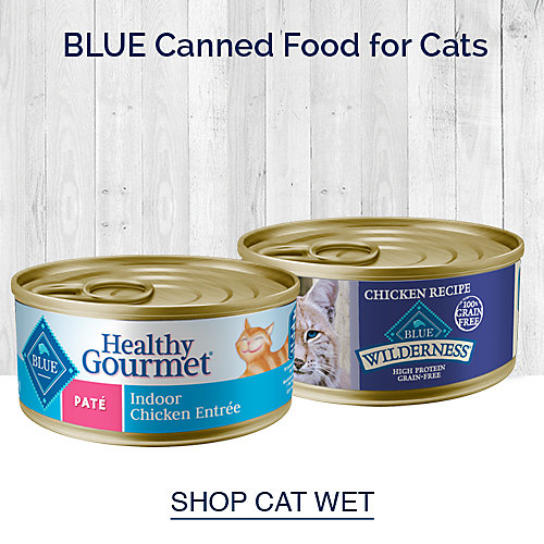Blue Canned Food for Cats
