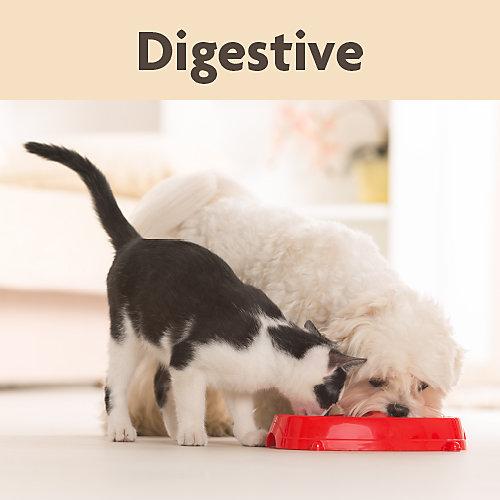 NaturVet Digestive
