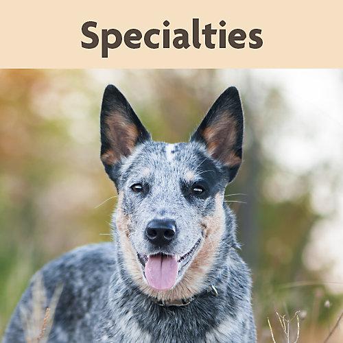 NurtaVet Specialties