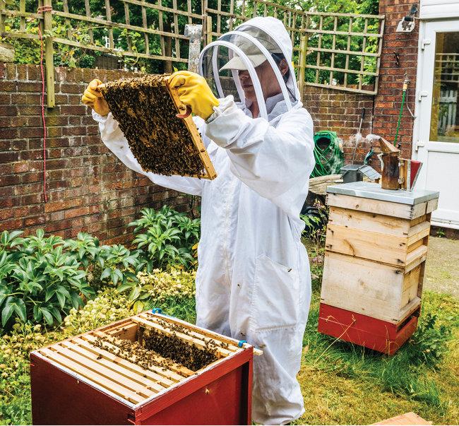 Raising honeybees keeps hobbyists buzzing - Tractor Supply Co.