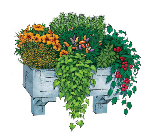 Window Box - Tractor Supply Co.