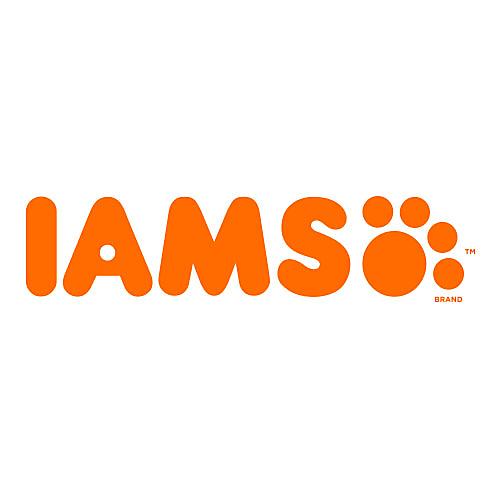 IAMS Cat