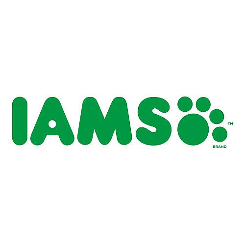 IAMS Dog