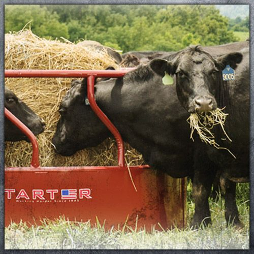 tarter farm and ranch