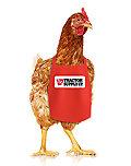 Chicken Supplies