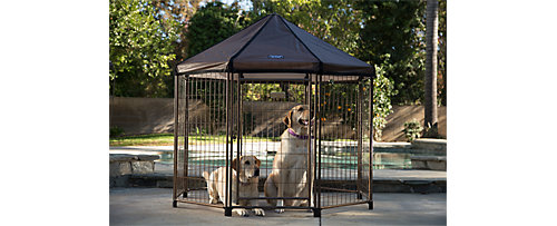dog kennels tractor supply co
