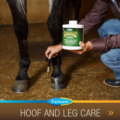 Hoof and leg