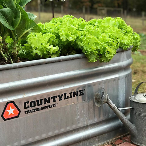 stock tank cooler planter