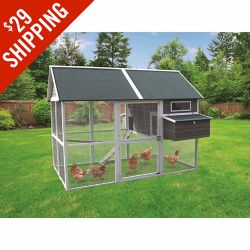 Shop Big Green Walk-In Hen House at Tractor Supply Co.