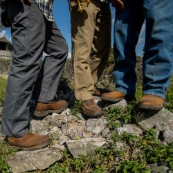 Shop Blue Mountain Jeans and Pants at Tractor Supply Co.