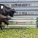 Oval Galvanized Stock Tank, 2 ft. W x 6 ft. L x 2 ft. H, 169 gal. Capacity