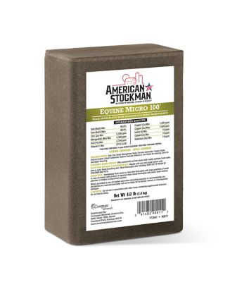 AMERICAN STOCKMAN EQUINE MICRO 100 SALT BRICK SUPPLEMENT, 4 LB.
