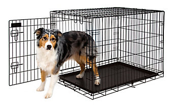 wire dog kennel with a dog standing in the open door