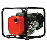 Red Lion 6.5 HP Engine Driven Fertilizer Pump