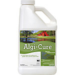 Applied Biochemists Algi-Cure® Algaecide, 1 gal.