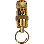 Campbell Hausfeld® Air Compressor Safety Valve