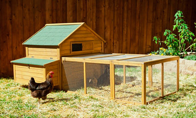 chicken coop with a mesh enclosure on the front of it